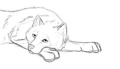 Draw A Wolf Laying Down 521 Best Graphite Pencil Drawings Of Fox Images Pencil Drawings