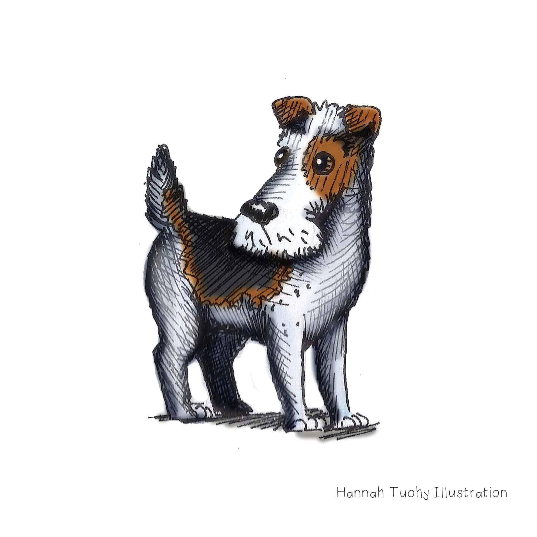 Drawing A Dog In Illustrator Hannah Tuohy Illustrator Dogbarkingvideo Dog Barking Video