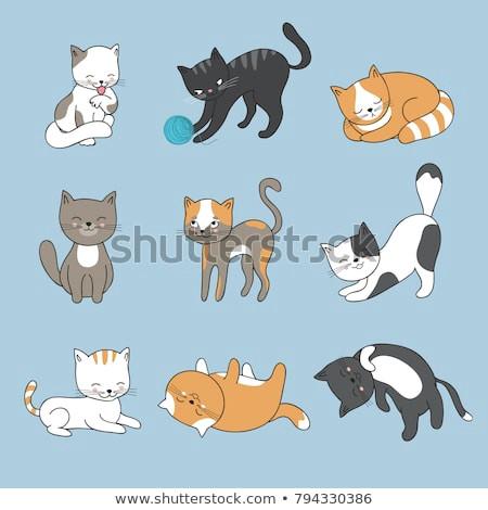 Drawing Anime Cats Hand Drawing Cute Cats Vector Kitty Stock Vektorgrafik Lizenzfrei