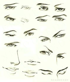 Drawing Anime Eyebrows Manga or Anime Eye Drawings 2 by Siouxstar Deviantart Com On