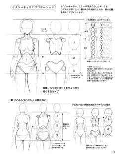 Drawing Anime Proportions 83 Best Drawing Proportions Images Drawings Sketches Figure