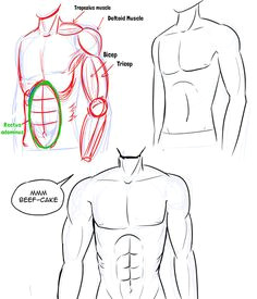 Drawing Anime Upper Body 7 Best Drawing Male Bodies Images Manga Drawing Drawing