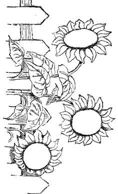 Drawing Flowers Kindergarten 65 Best Digital Flowers Images Flower Designs Sunflowers