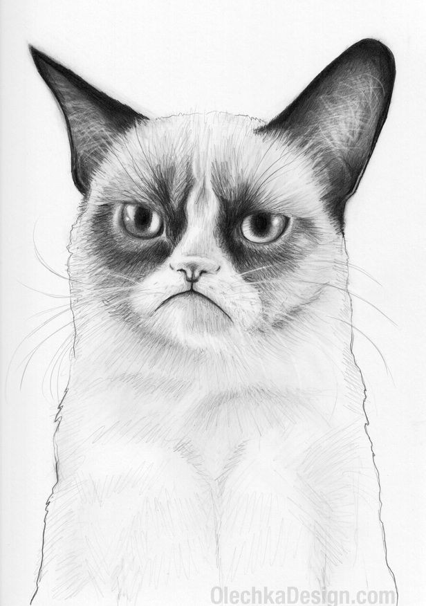 Drawing Of A Cat Sleeping Grumpy Cat She who Sleeps with Cats Pinterest Grumpy Cat Cats