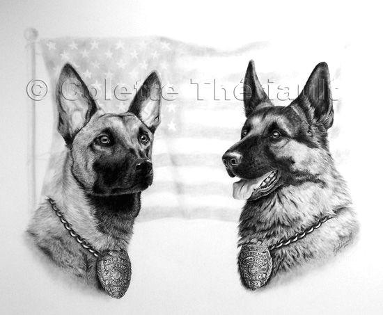 Drawing Of A Police Dog German Shepherd Police Dog Pet Portraits Art Art Pet Portraits