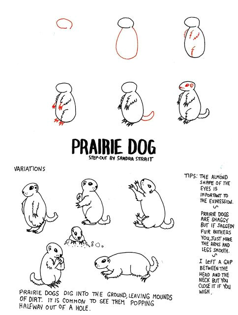 Drawing Of A Prairie Dog Life Imitates Doodles Prairie Dog Fantasy Landscape Step Out
