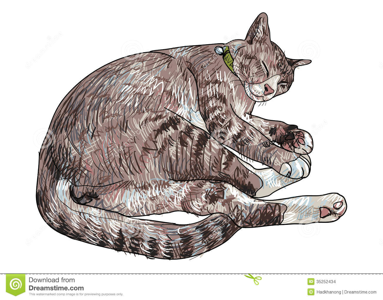 Drawing Of A Sleeping Cat Sleeping Cute Cat Stock Vector Illustration Of isolated 35252434