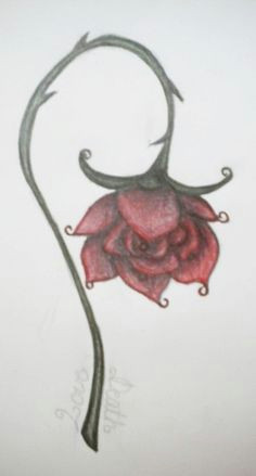 Drawing Of Wilted Rose 11 Best A Wilted Rose Images Wilted Rose Roses Bleeding Rose