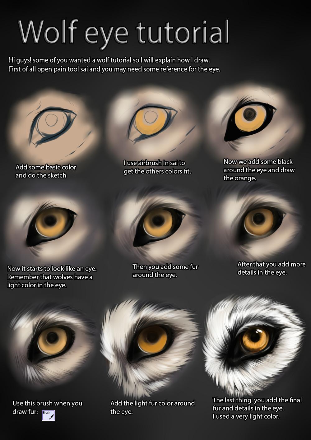 Drawing Of Wolf Eyes Wolf Eye Tutorial by themysticwolf Deviantart Com On Deviantart