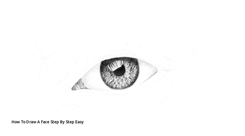 Drawings Of Eyes Step by Step Easy How to Draw A Face Step by Step Easy I Pinimg 750x 56 Af 0d