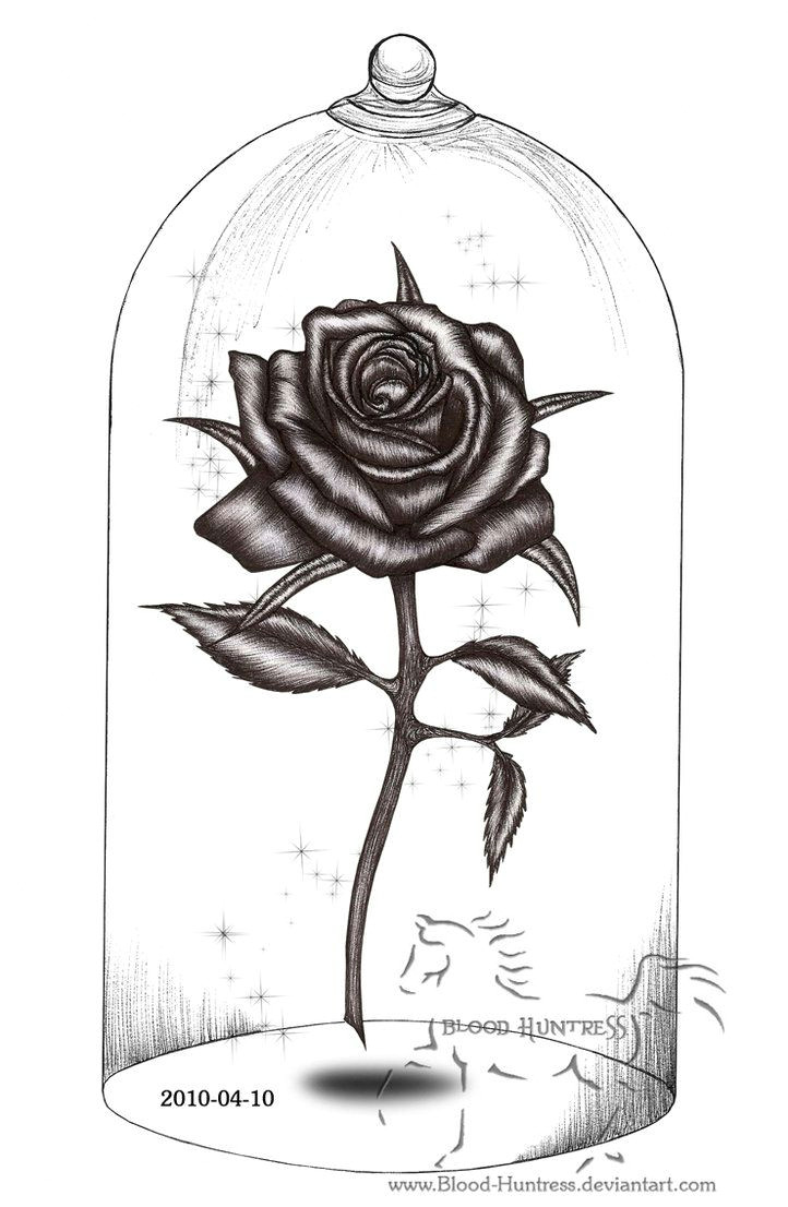 Drawings Of Roses In Pen Rose Drawings Rose Pen Drawing with Glass by Blood Huntress On