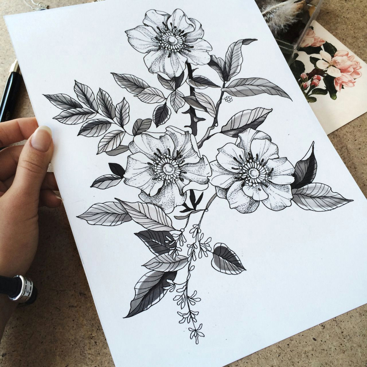 Drawings Of Wild Roses Familyinktattoo Wild Roses Tattooskech Body Modification