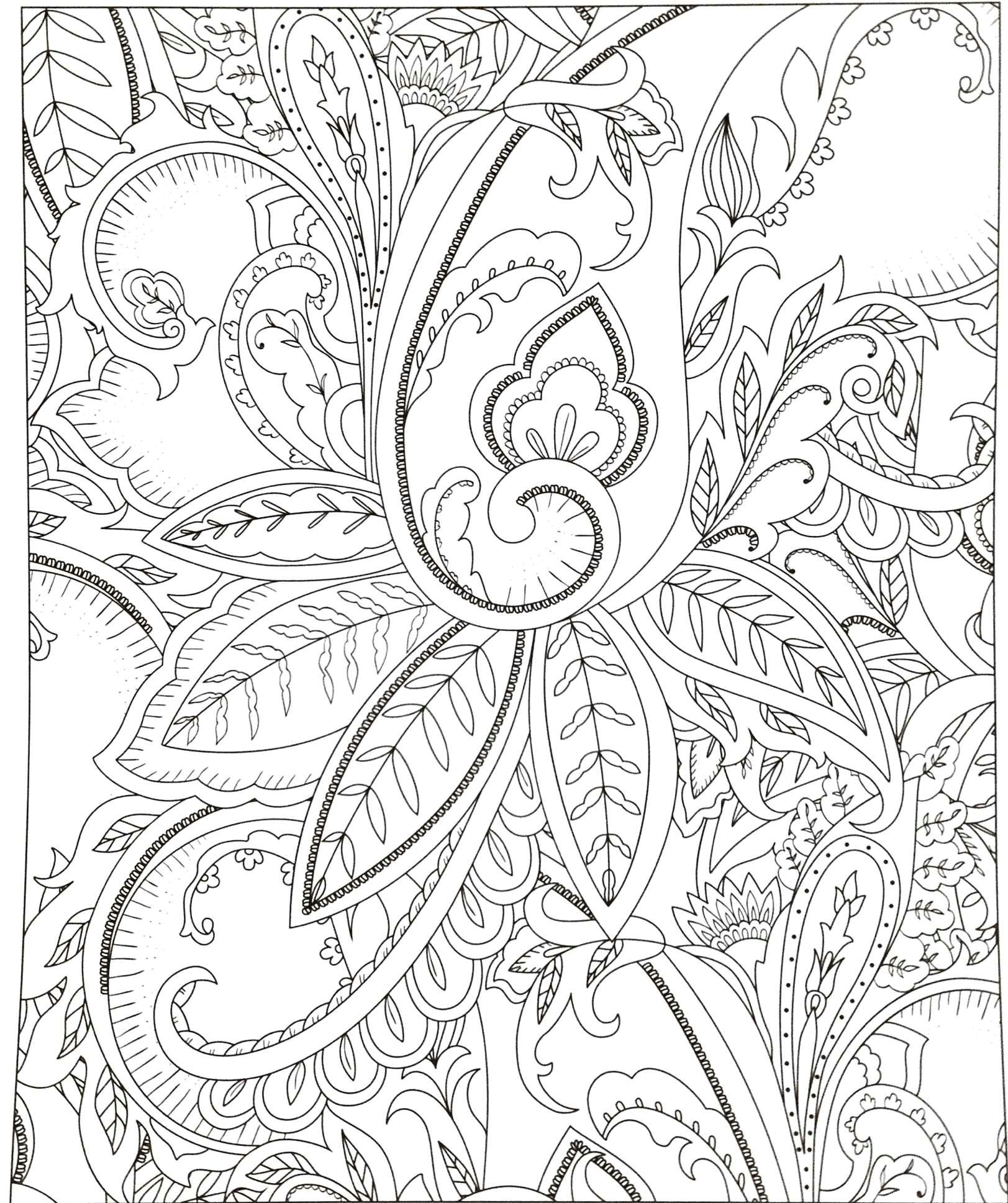 Flowers Drawing Easy with Color Easy to Draw Instruments Home Coloring Pages Best Color Sheet 0d
