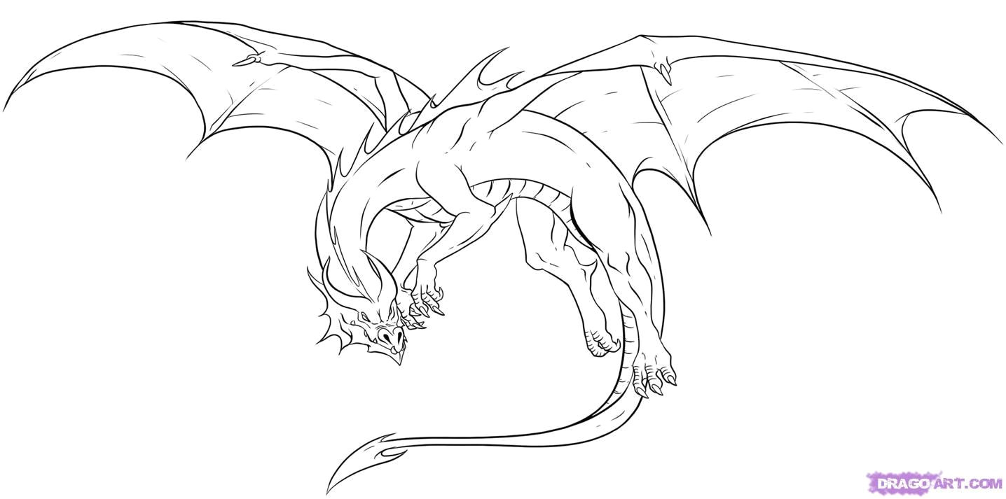 Really Cool Drawings Of Dragons Awesome Drawings Of Dragons Drawing Dragons Step by Step Dragons