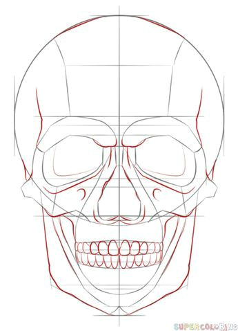 Skull Drawing Lesson Plan How to Draw A Human Skull Step by Step Drawing Tutorials for Kids