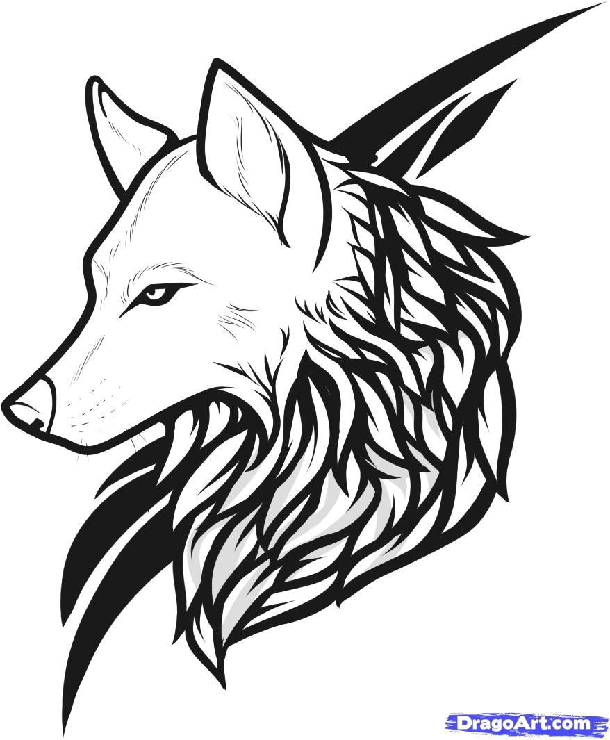 Wolf Drawing with Name the Domain Name Popista Com is for Sale Coloring Pages Wolf
