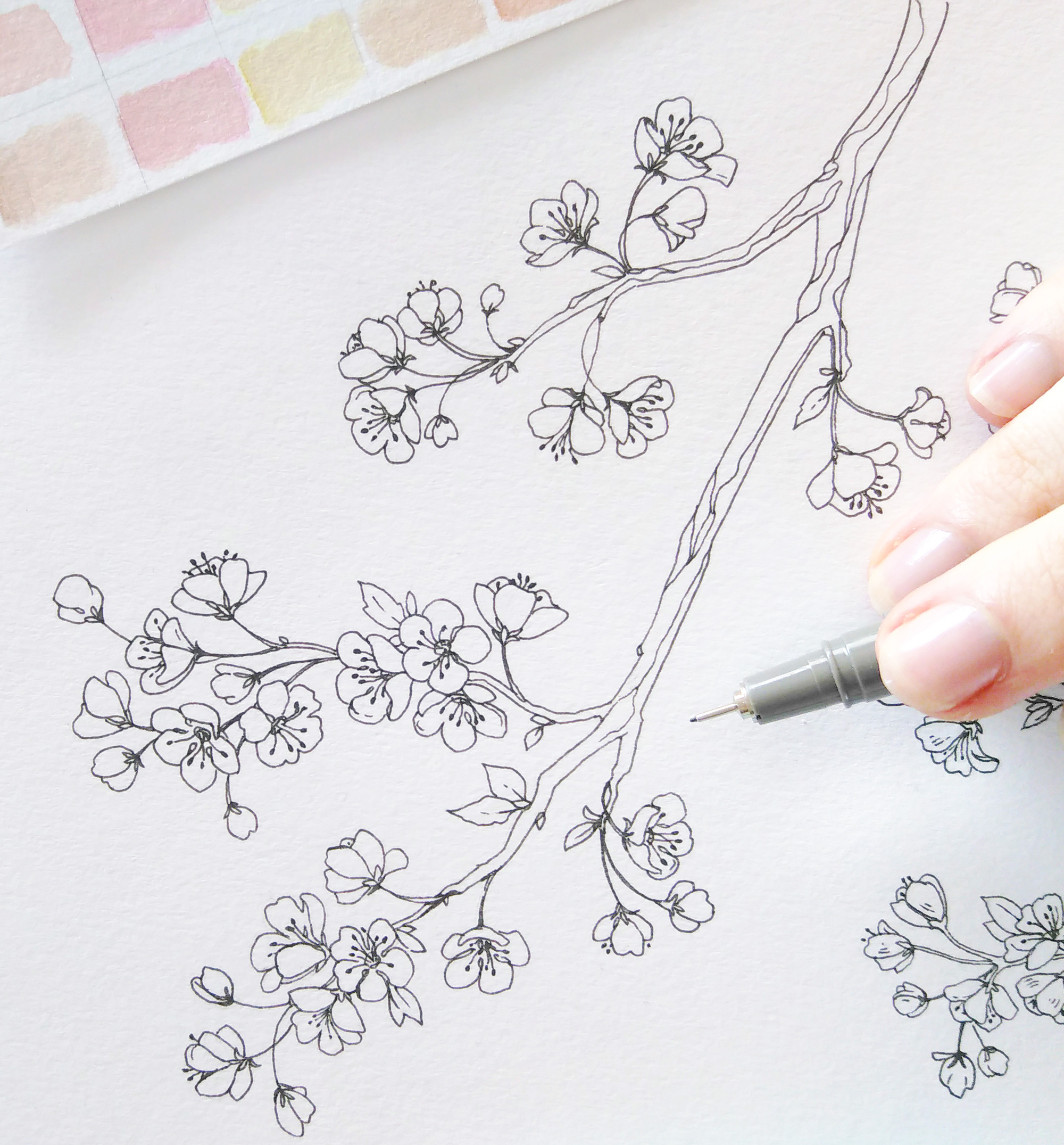 Easy Cherry Blossom Drawing Spring Bullet Journal Layout Cherry Blossoms Bullet