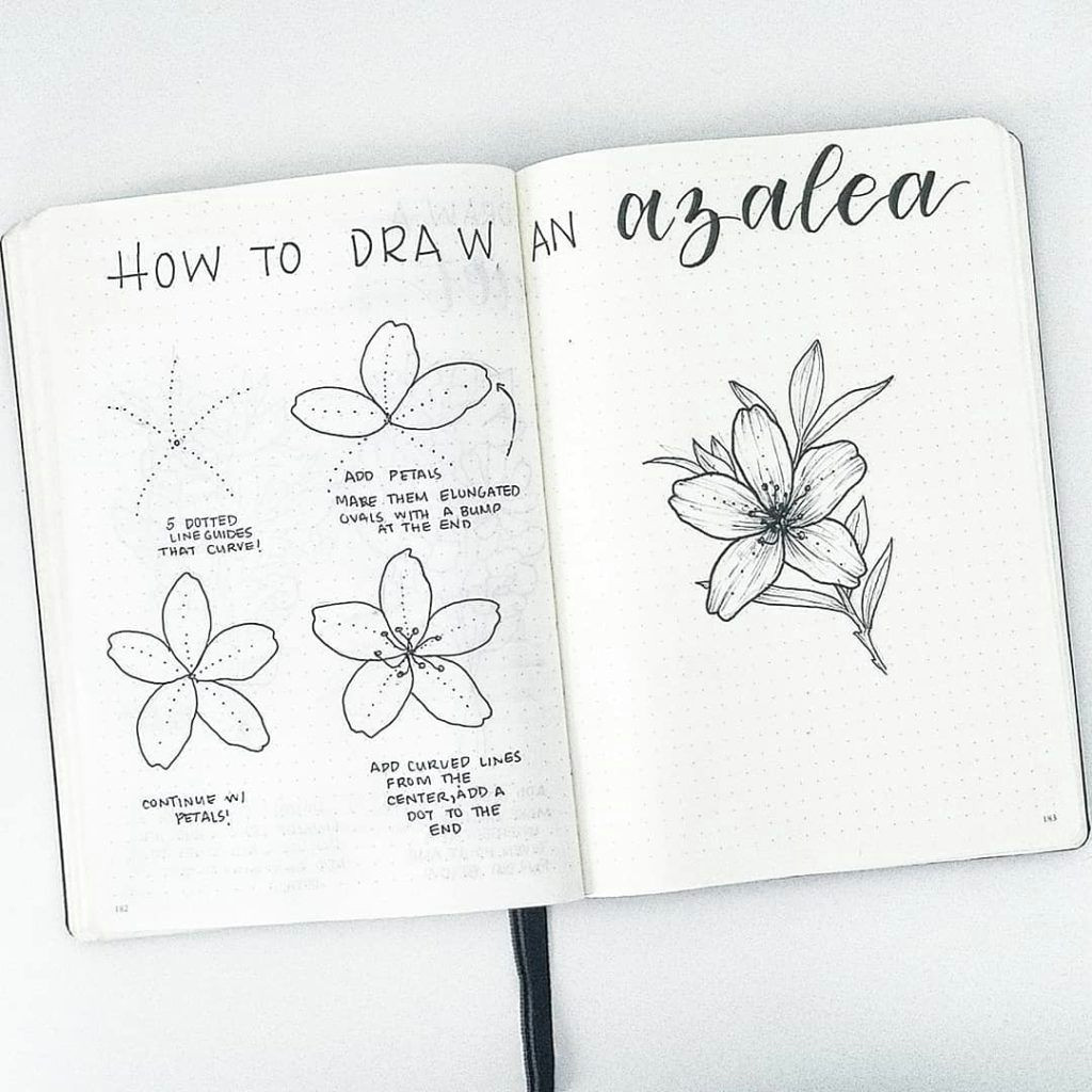 Easy How to Draw A Flower How to Draw Easy Flower Doodles for Bullet Journal Spreads
