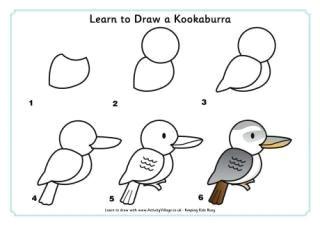 Kookaburra Drawing Easy Learn to Draw A Kookaburra In 2019 Drawings Bird Drawings