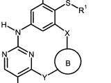 0305 Drawing Wo2007079982a1 2 4 9 Triaza 1 2 4 Pyrimidina 3 1 3