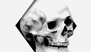 3 Skulls Drawing Skull Black Rotring Ink Dots 0 3 Mm Schoellershammer White Paper
