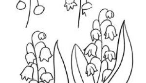 8 March Flowers Drawing 361 Best Drawing Flowers Images Drawings Drawing Techniques