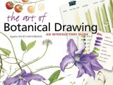 8 March Flowers Drawing the Art Of Botanical Drawing An Introductory Guide Agathe Ravet