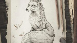 Abstract Animal Drawings Pencil Drawing Illustration Art Retro Vintage Old Fox