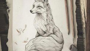 Artists that Draw Animals Pencil Drawing Illustration Art Retro Vintage Old Fox