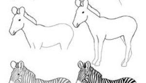Cartoon Drawing Zebra 45 Best Zebra Drawing Images Zebra Art Zebra Drawing Zebra Painting