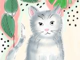 Children S Drawing Of A Cat Jen Elza Illustrations Working On An Illustrated Childrens Story
