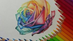 Colored Pencil Drawing Ideas Easy Rose Color Pencil Drawing by Gaby Sabbagh Colorful
