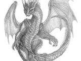 Coolest Drawings Of Dragons 136 Best Lineart Dragons Images Dragons Dragon Kites