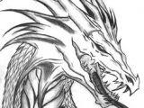 Coolest Drawings Of Dragons 968 Best Dragon Drawings Images Mandalas Coloring Books