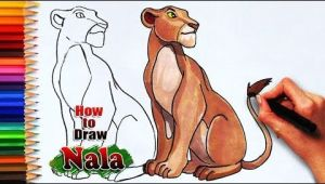 Cougar Animated Drawing How to Draw Nala From the Lion King the Lioness Drawing