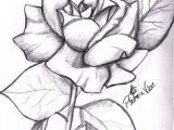 Cute Drawing Of A Rose 25 Best Cute Drawings for Your Gf Bf Bff Images Beautiful Drawings