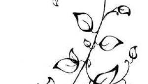 Cute Vine Drawing 72 Best Leaves and Vines Images Drawings Leaves Paint