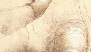 Da Vinci Drawings Of Hands Leonardo Da Vinci S Study Of Hands