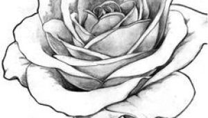Detailed Drawing Of A Rose Image Result for Detailed Flower Outline Art Tattoos Drawings