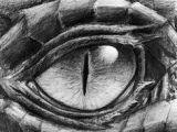 Dragon Eye Drawing Easy 80 Best Dragon Eyes Images Dragon Eye Dragon Dragon Art