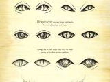 Dragon S Eye Drawing Easy How to Draw A Cute Easy Dragon Dragon Eye Drawing Step by Step at