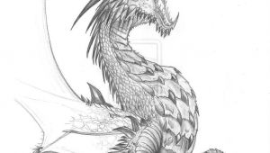 Dragons Fighting Drawing Pin by Tambre Kay On Expression Dragon Dragon Sketch Realistic