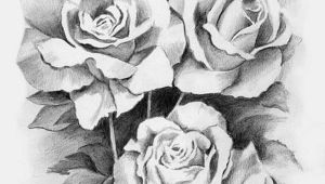 Draw A Real Rose Drawing Library Drawing Sketch Pencil Arts and Craft Ideas