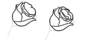Draw A Rose Step by Step In Pencil 100 Best How to Draw Tutorials Flowers Images Drawing Techniques