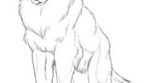 Draw A Sitting Wolf Die 73 Besten Bilder Von Wolf Wolf Drawings Draw Animals Und Drawings
