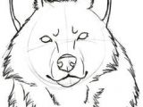 Draw Wolf Head Easy 887 Best Drawing Wolves Images In 2019 Wolves Anime Wolf Drawing S