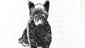 Drawing 011 Animal Bear Baby Bear Drawing 011 Brandon Bear Tattoos