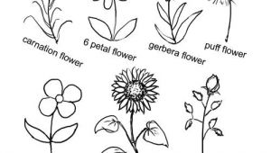 Drawing 6 Petal Flower Pin by Buggiecreations On Art Drawings Easy Drawings Easy Flower