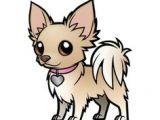 Drawing A Cartoon Chihuahua 11 Best Chihuahuas Images Chihuahua Dogs Pets Chihuahua Drawing