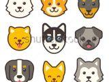Drawing A Cartoon Chihuahua Cartoon Dog Faces Set Different Breeds Of Dogs Husky Corgi Pug